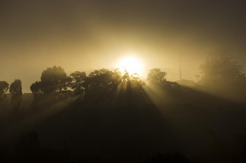 Neblina al amanecer