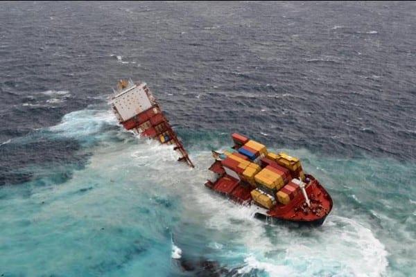 carguero nueva zelanda