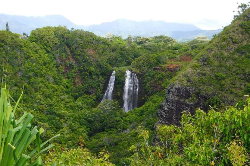 Monte Waialeale en Hawai
