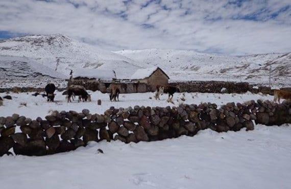 Nevada Perú