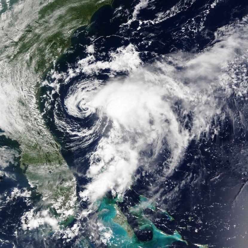 Tropical en la costa este de Florida