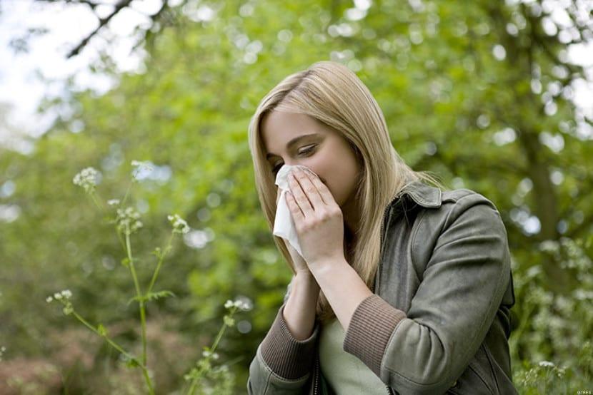 primavera alergia