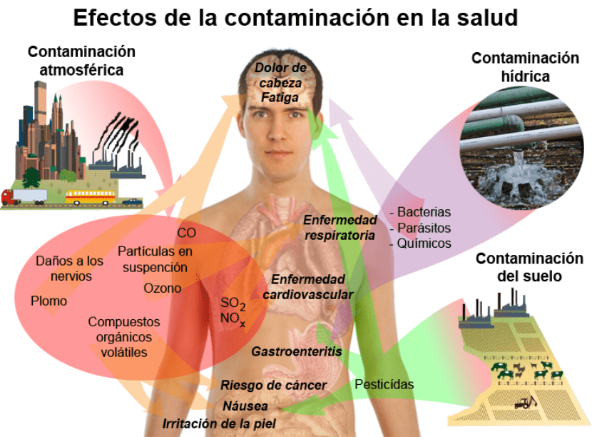Efectos de la contaminación