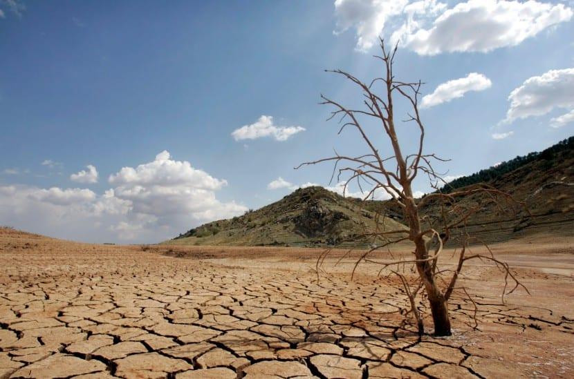 efectos de la sequía