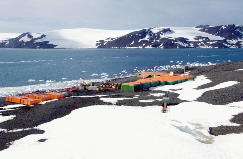 cangrejo rey invade Antártida