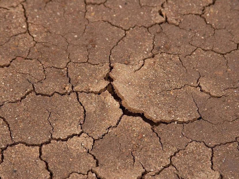 Consecuencias de El Niño