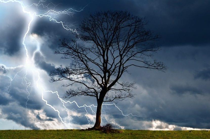 Impresionante tormenta y un árbol