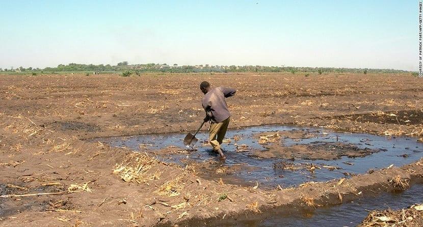 cambio-climatico-agricultura