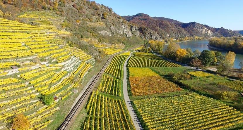 Agricultura, biomas antropogénicos