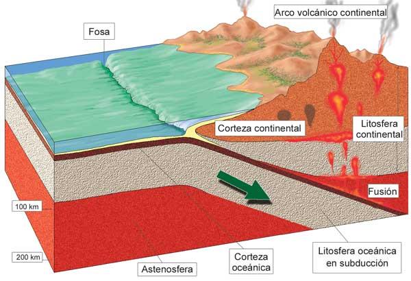 Litosfera continental y océanica