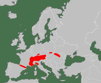 Área de distribución de la marmota