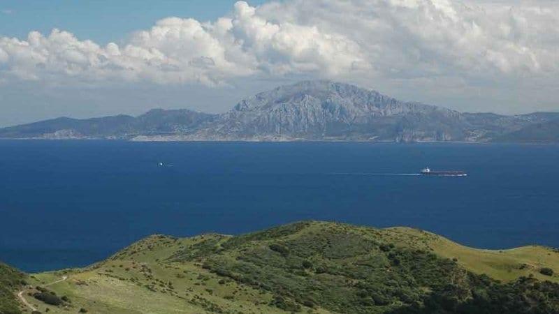 Las especies de aves migratorias cruzan el estrecho de Gibraltar cuando ven que hay condiciones favorables