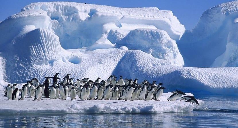 La Antártida y su influencia en el clima