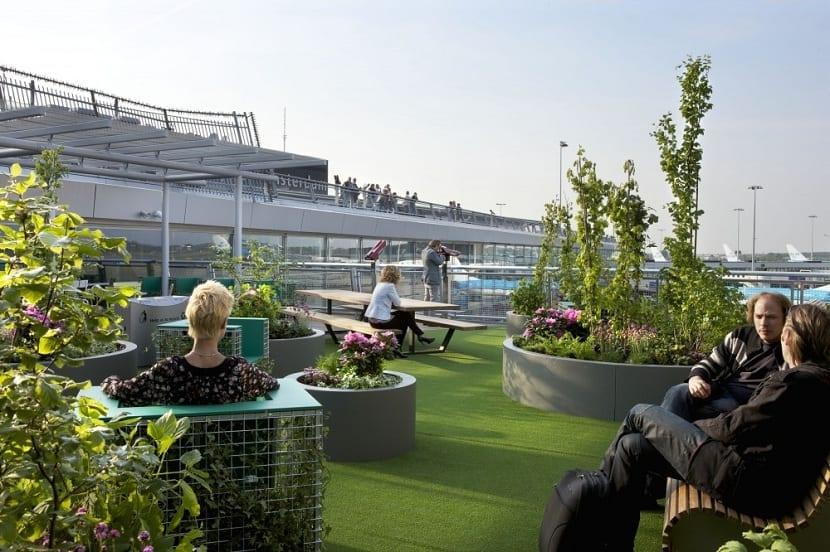 arquitectura verde en Ámsterdam para el cambio climático