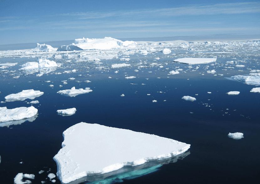 deshielo en la antártida a causa del cambio climático