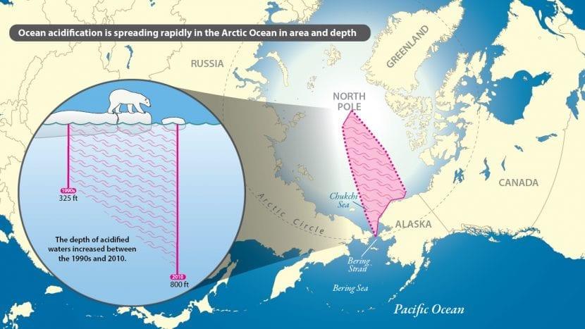 Gráfico de la acidificación del Océano Ártico