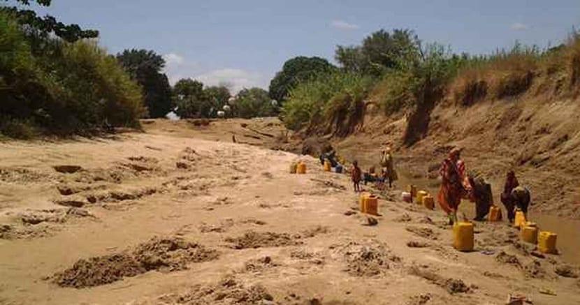 muertos por la sequía en somalia