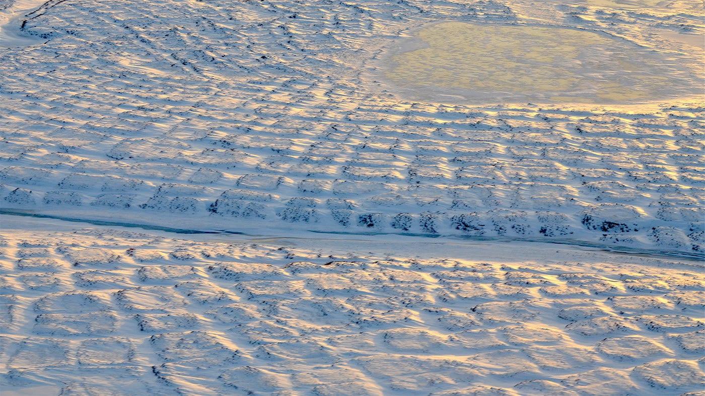 Tundra cubierta de nieve en Alaska