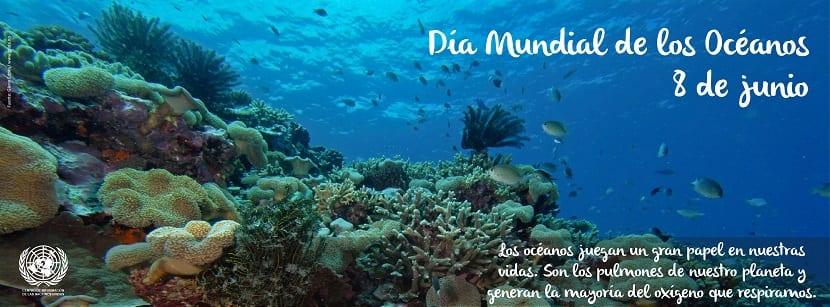 el día mundial de los océanos se celebra el día 8 de junio