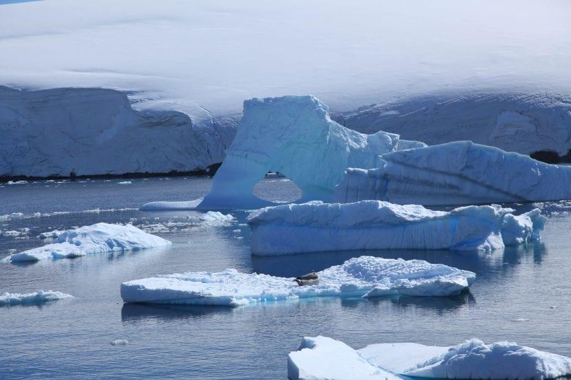Icebergs de la Antártida