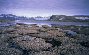 permafrost alaska deshielo