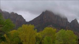 vegetacion y precipitaciones