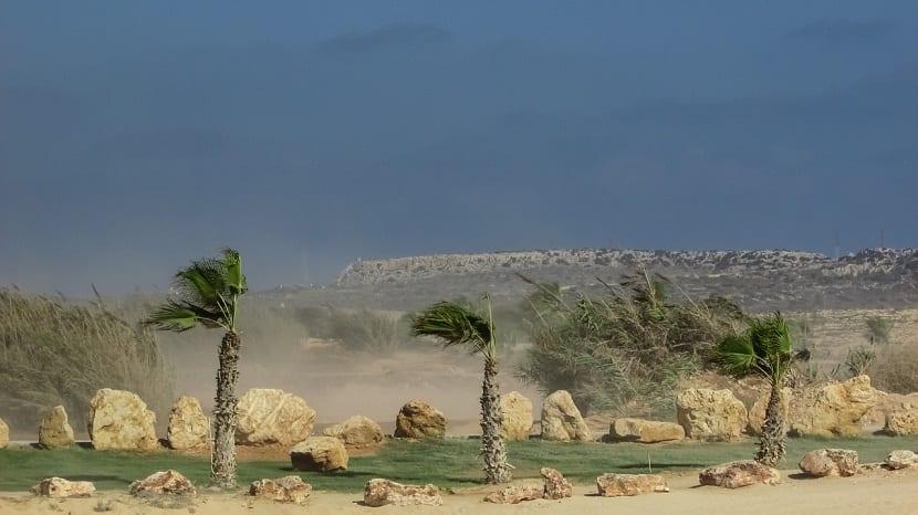viento desierto