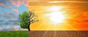 diferencia zonas humeda de desierto