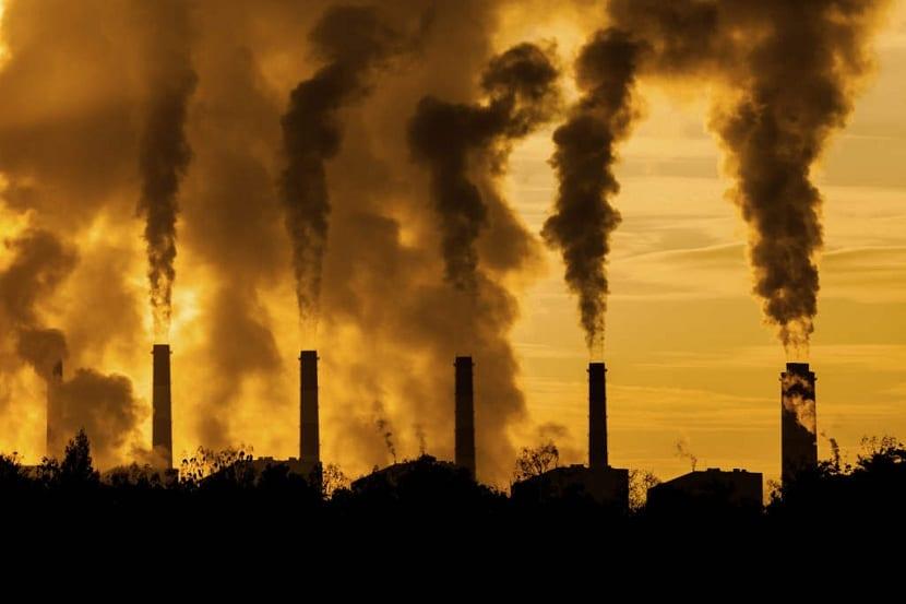 el ozono en superficie es tóxico para plantas y animales
