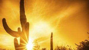 las olas de calor provocarán muchas muertes