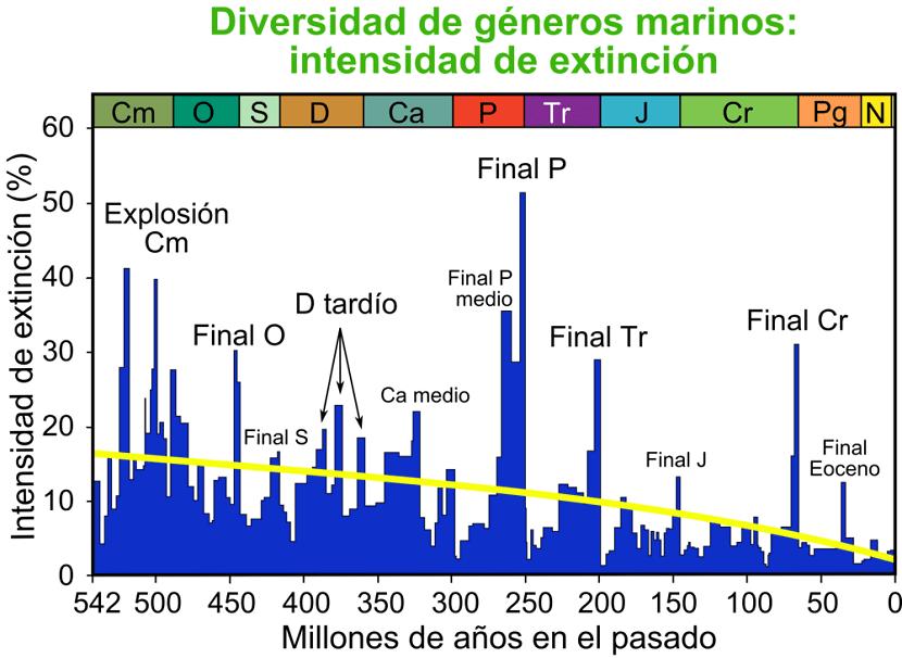 extincion especies últimos millones de años
