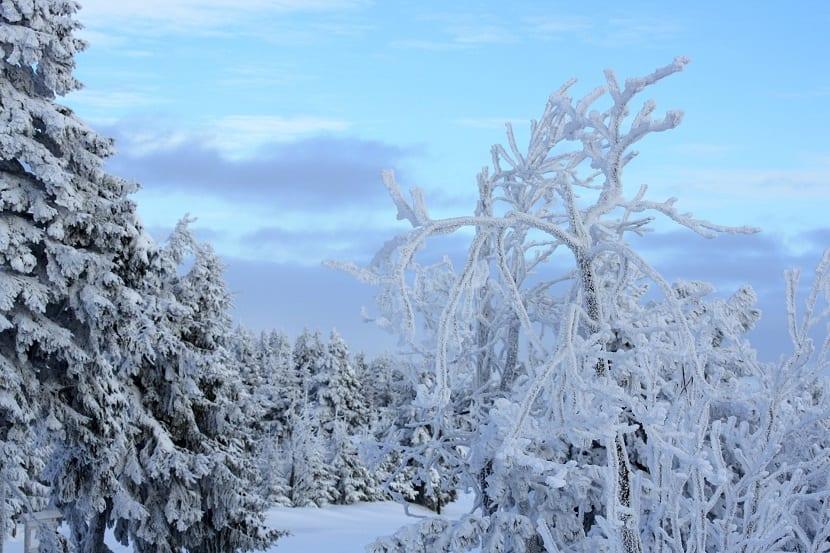 edad de hielo nieve