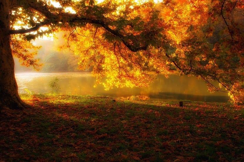 otoño calido