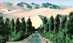 iniciativa verde´Sáhara Sahel