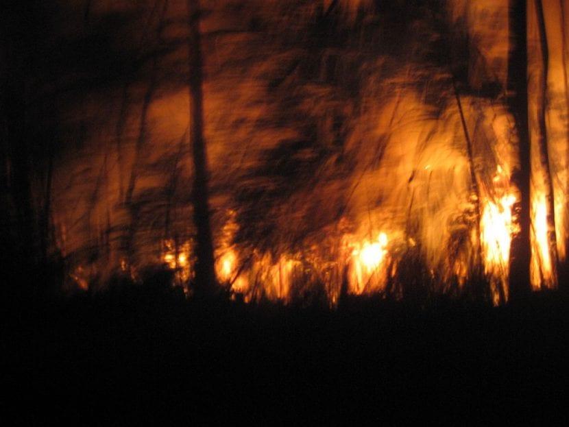 Incendio en Galicia en el año 2006