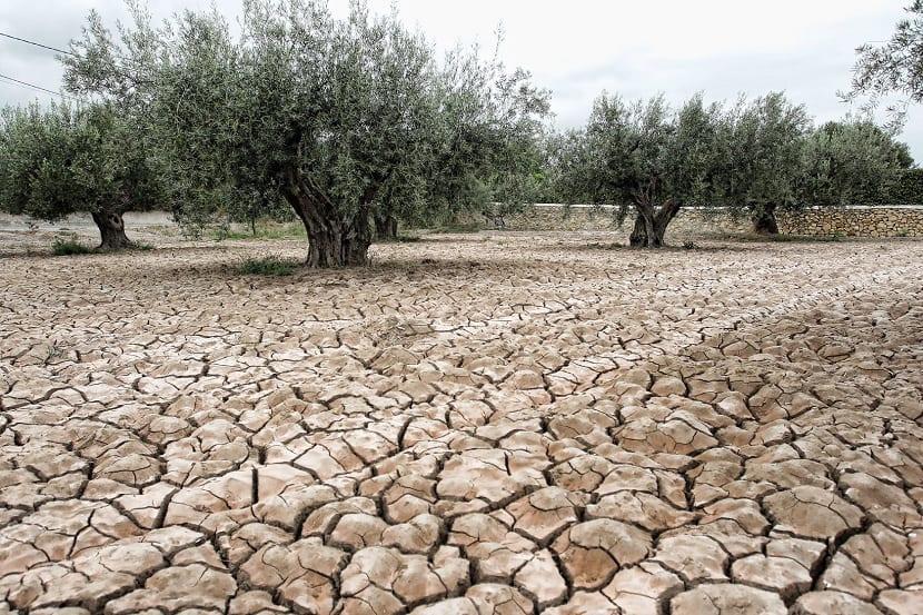 déficit hidrológico