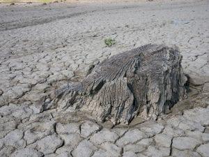 La sequía en España es un problema cada vez más serio