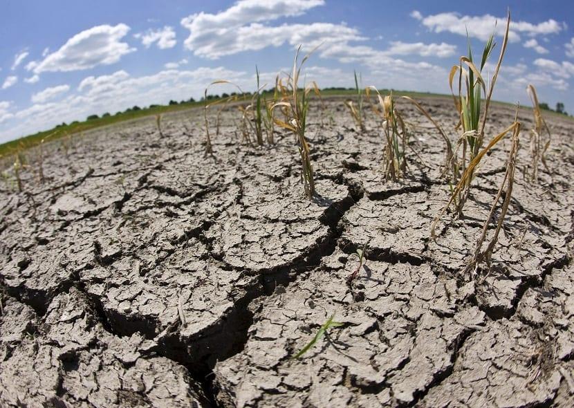 sequía en el CSC