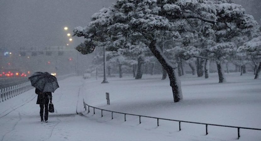 Temporal de nieve en Japón