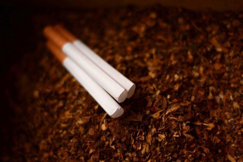 Fumar perjudica tu salud y la del planeta