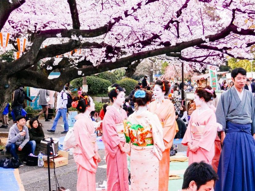Hanami, en Japón, días para ver las flores de sakura