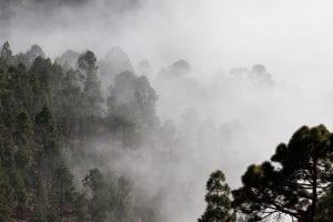 humedad ambiental