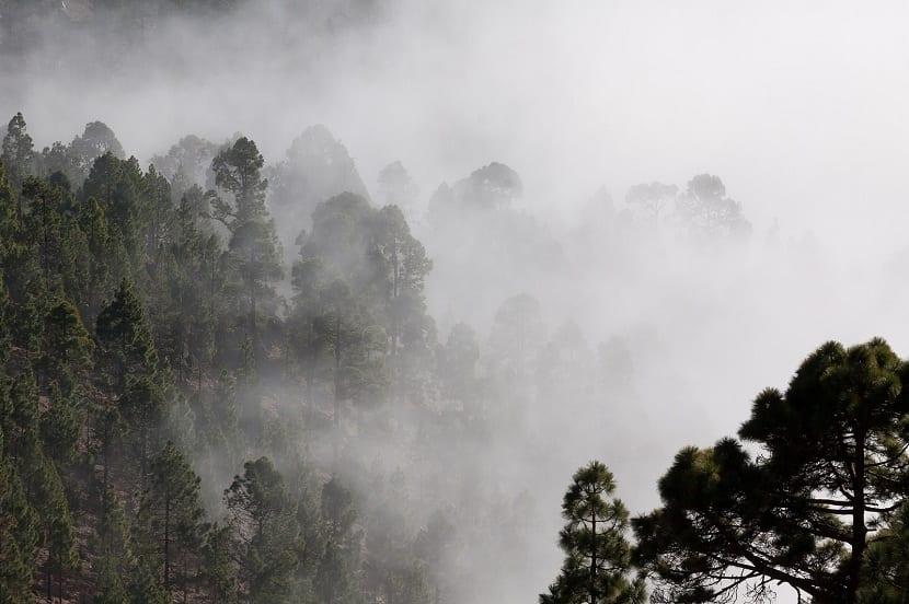 higrometros y humedad ambiental