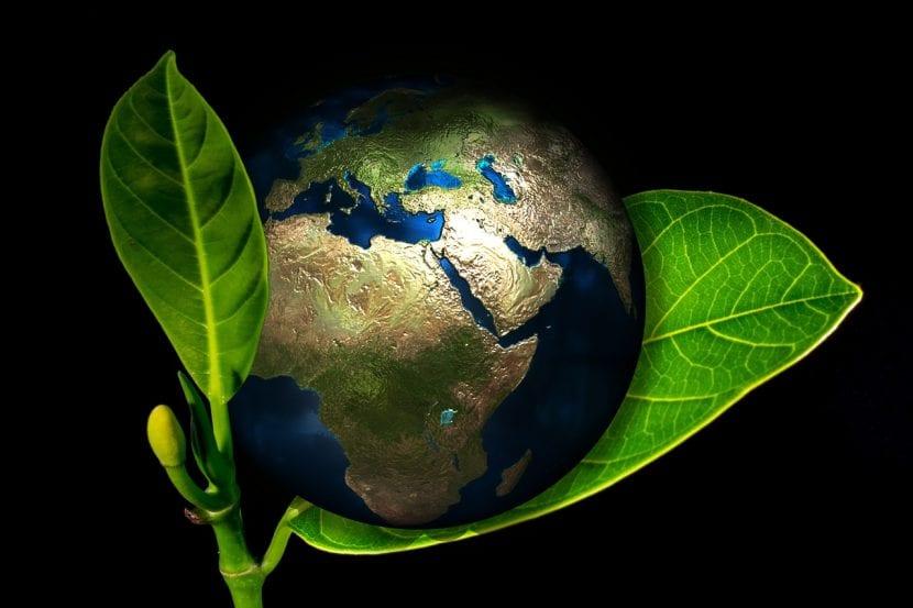 Tú puedes hacer mucho para cuidar de la Tierra