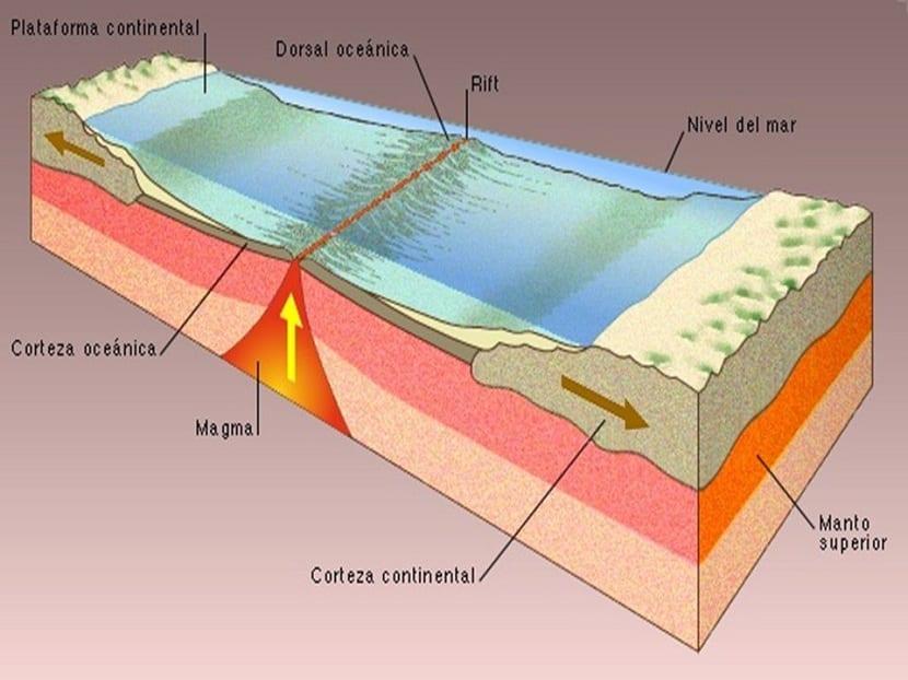 Dinámica de una dorsal oceánica