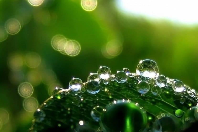 gotas de agua sobre una superficie