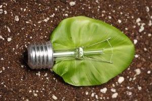 Electricidad con materia orgánica