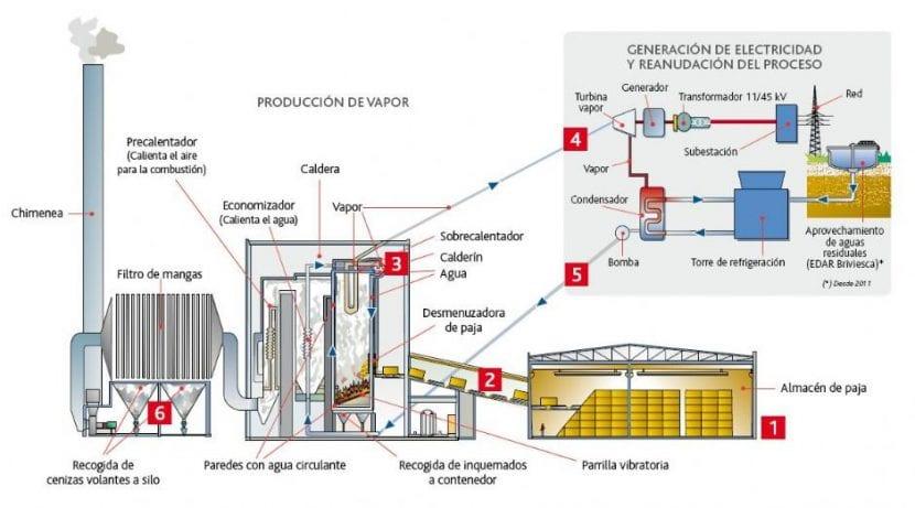 Esquema con la caldera de combustion biomasa
