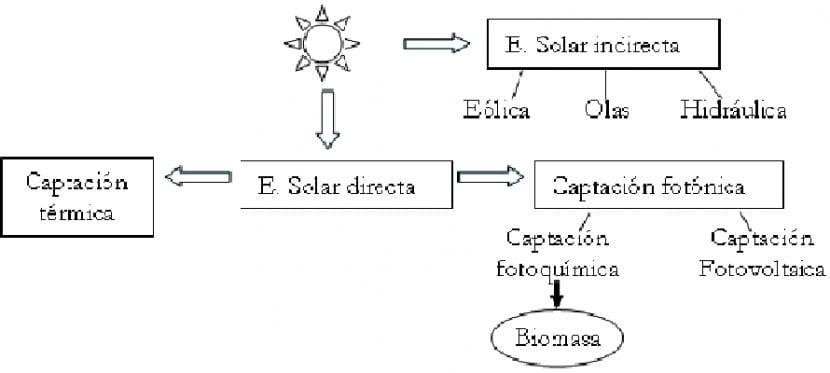 como se produce energía fotosíntesis