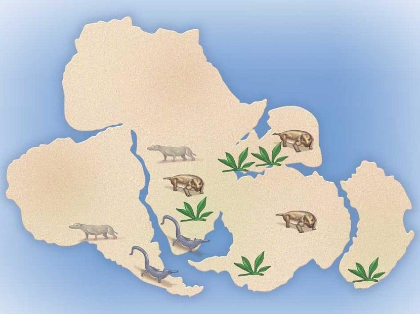 Existencia de seres vivos en otros continentes